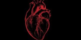 Algoritam koji predvidja srcani udar
