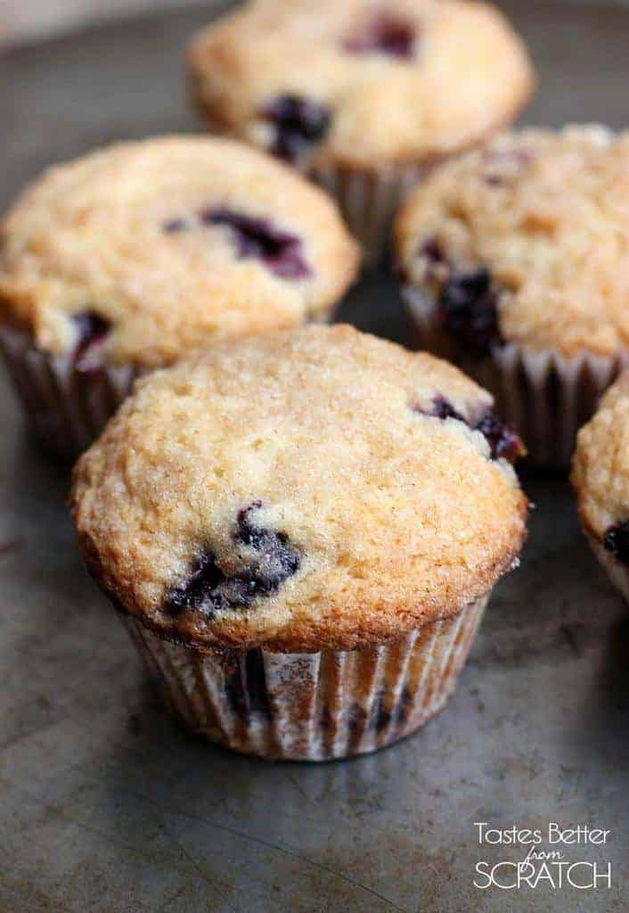 Blueberry Muffins  Tastes Better From Scratch