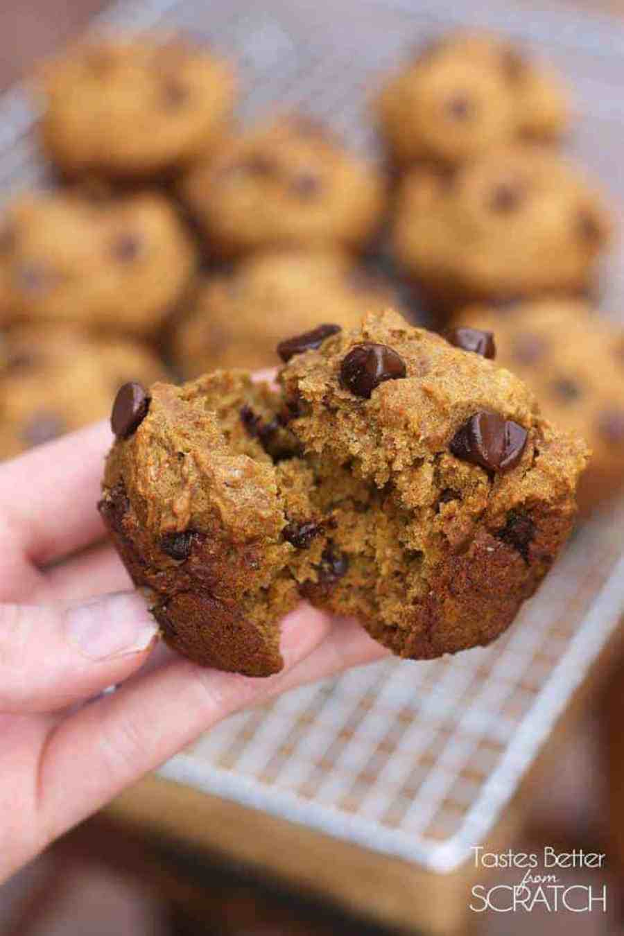 Skinny Pumpkin Chocolate Chip Muffins | - Tastes Better From Scratch