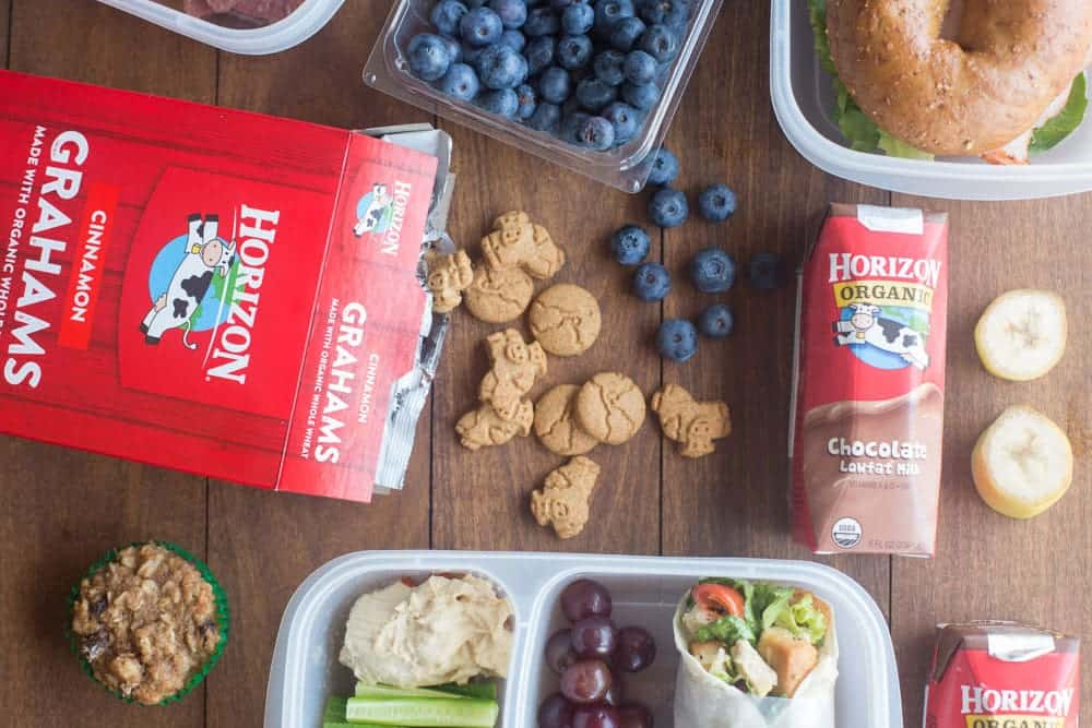 Back to School Lunch Ideas, tips and tricks!