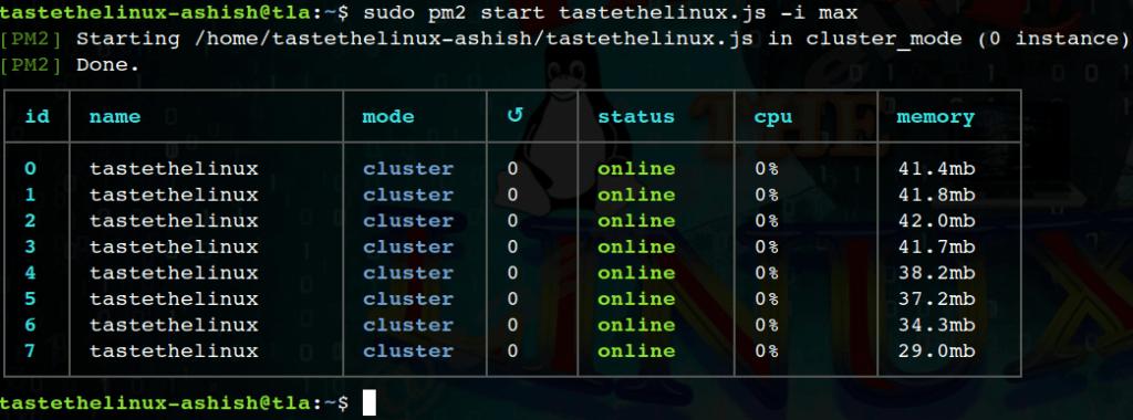 Pm2-cluster-Max