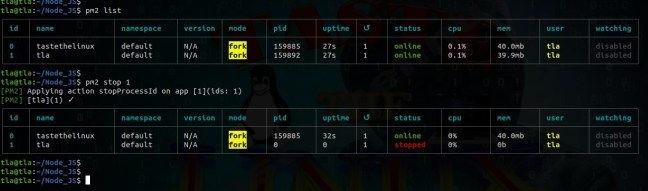 pm2 commands node list to start the process by ID