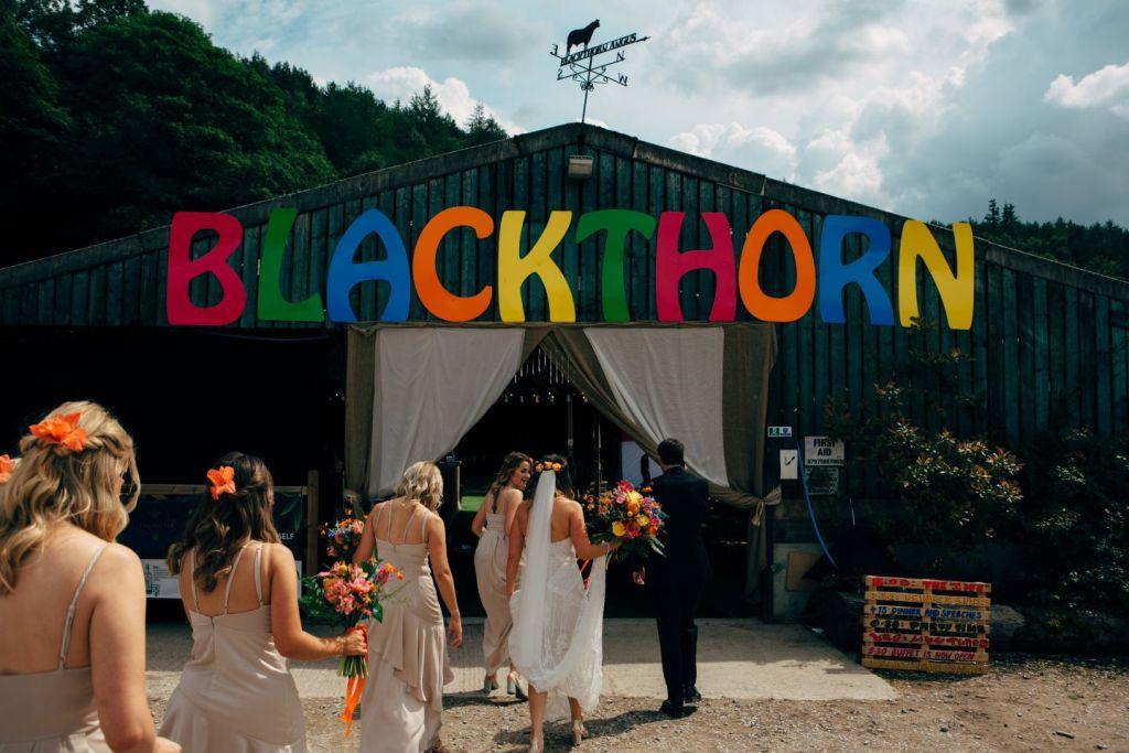 Wedding Fiesta at Whitebottom Farm