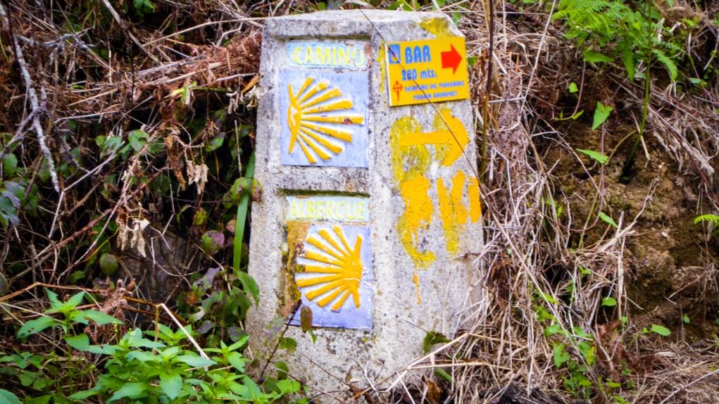 Langs ruten viser de gule muslingeskaller vej