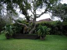 Sri Lanka Garden Design