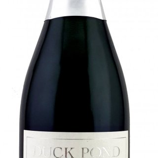 Duck Pond Fries Family Cellars XX Blanc de Noir Bruit 1996 Sparkling Wine