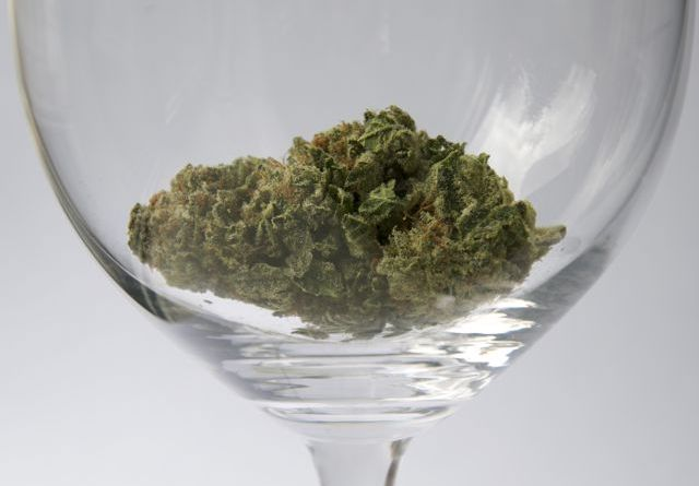 cannabis in wine, why?, www.tastingroomconfidential.com