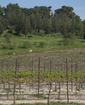 Clos de Gat winery watchtower