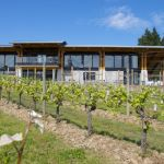 New Blue Grouse Winery Takes Flight