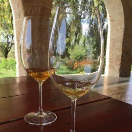 muscat chardonnay clos de gat winery