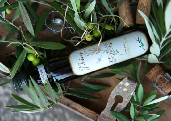 Olive Oil from Brda (Source: www.slovenia.info)