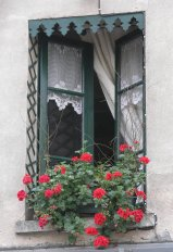 Window box with geraniums. Place du Tertre, Montmartre, France.