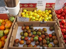 sf_farmers_market52