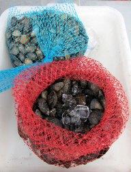 sf_farmers_market_seafood4