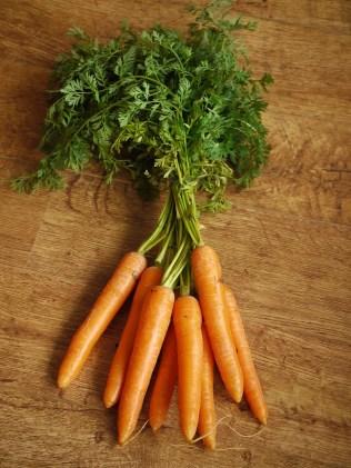carrots-1112020_1280