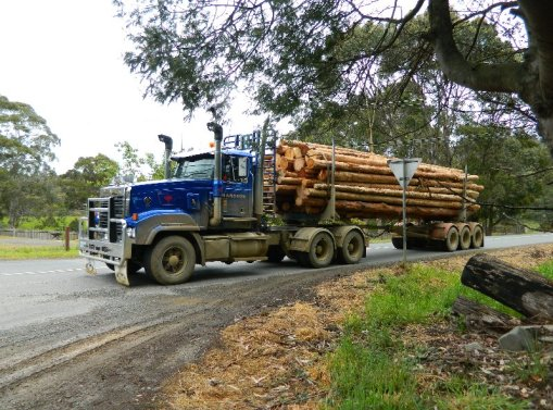 A log truck on Scotts Road, Geeveston
