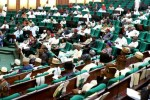 Nigeria House Of Reps Approve Compulsory Genotype Compatibility Test For Intending Couples