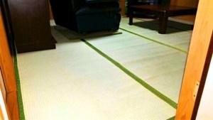 中国産畳表での表替えなら、国産の高級上敷きを畳の上にそのまま敷く方が良いと思う理由