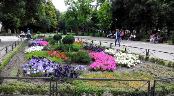 В Симферополе важной частью Курбан-байрама станут соревнования по борьбе Куреш