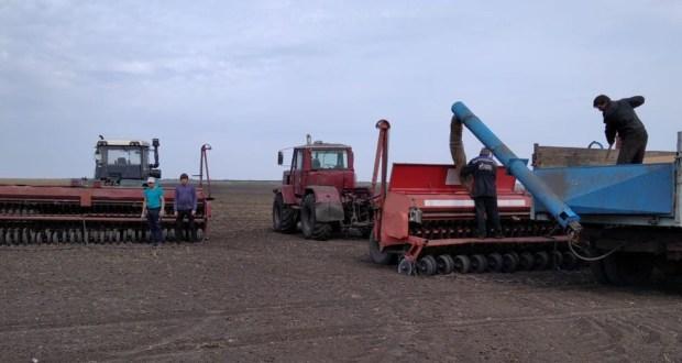 Түбән Новгород өлкәсендәге бай тәҗрибәле фермерлык хуҗалыгы