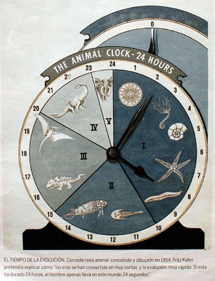 El tiempo de la evolución