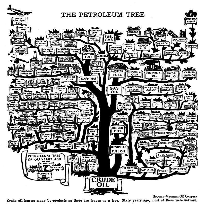 árbol genealógico del petróleo