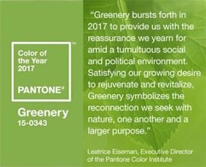 Pantone color of the year description