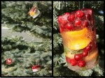 Guest Project — make Frozen Outdoor Ice Ornaments!!