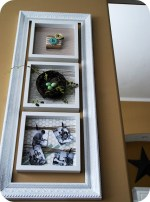 Decorating a wall for all seasons — Spring Specimen Wall Art!