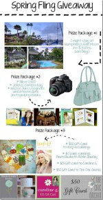 Spring Fling Giveaway — Three Prize Packages,  $1,250 Total Value!!