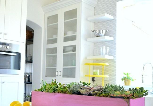 12 Ways to Display Succulents