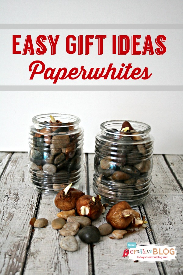 Easy-Gift-Ideas-Paperwhites