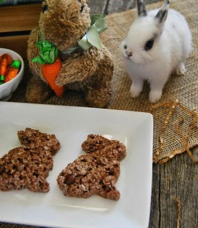Chocolate Krispy Bunnies
