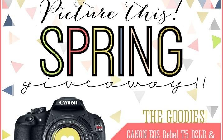 Win a DSLR Camera or Cedar Swing Set!