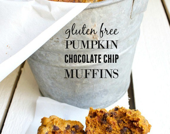Happy Holidays: Gluten Free Pumpkin Chocolate Chip Muffins