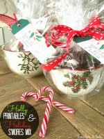 """Sweetest Holiday"" Holly Gift Tags and Holiday Smore's Mix Recipe!"