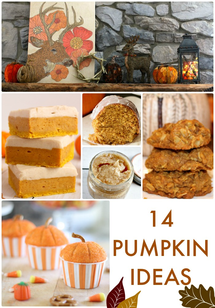 14 Pumpkin Ideas