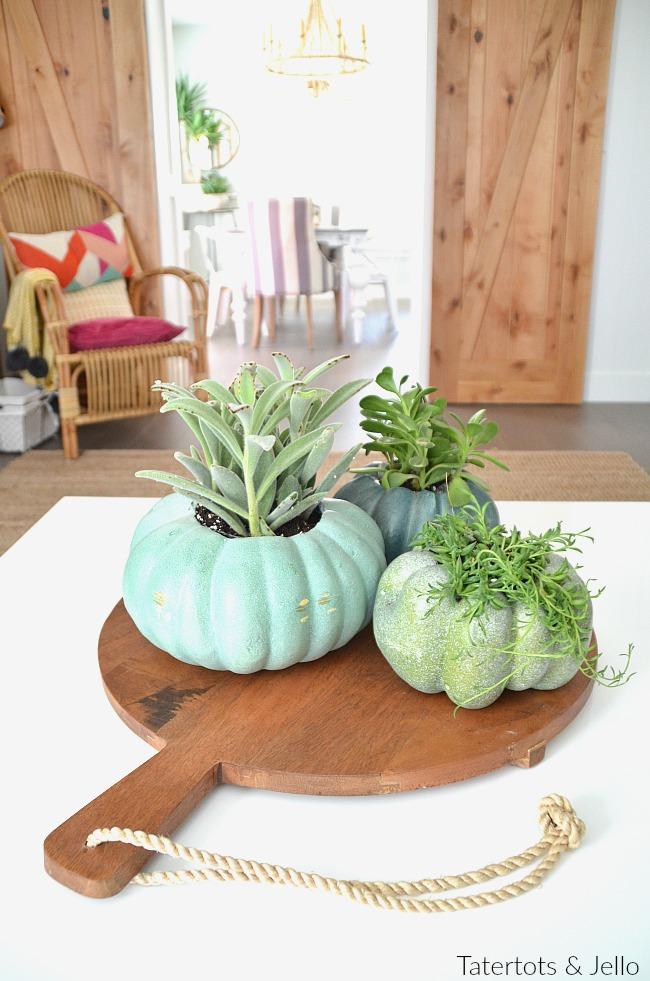 pumpkin succulent planters