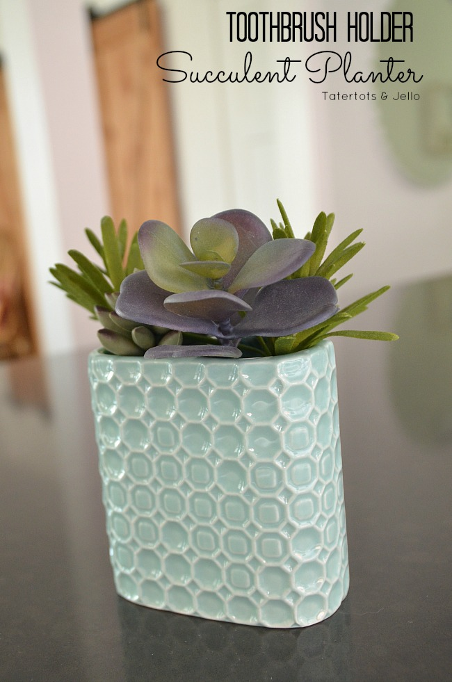 toothbrush holder succulent planter