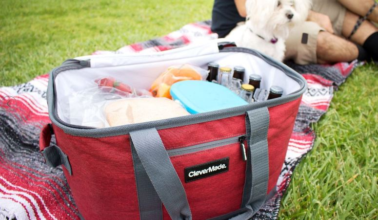 Best Friday Features Party + CleverMade Picnic Giveaway