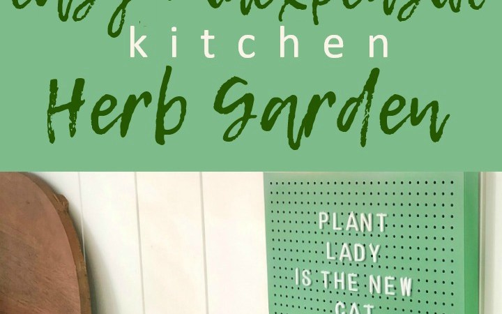 Inexpensive and Easy Kitchen Herb Garden DIY