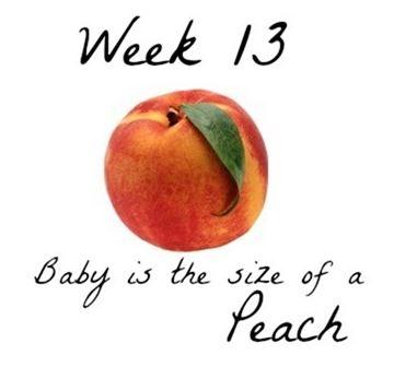 gebelik günlüğü 13., Kader'in Gebelik Günlüğü 13. Hafta, Tatlı Bir Telaş