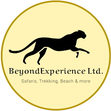 BEYOND EXPERIENCE LIMITED