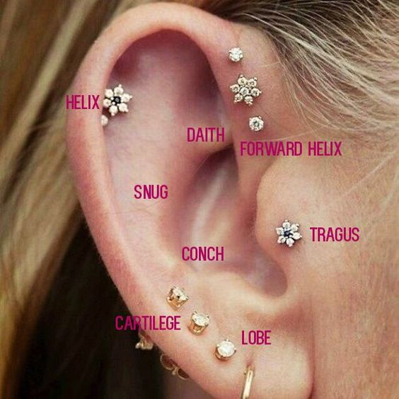 cartilage piercing diagram network interface device every little detail you need to know tats n