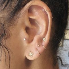 Cartilage Piercing Diagram 91 S10 Radio Wiring Every Little Detail You Need To Know Tats N Earlobe And Piercings