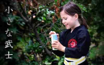 Lerne die Kampfkunst der Samurai montags in Limburgerhof kennen