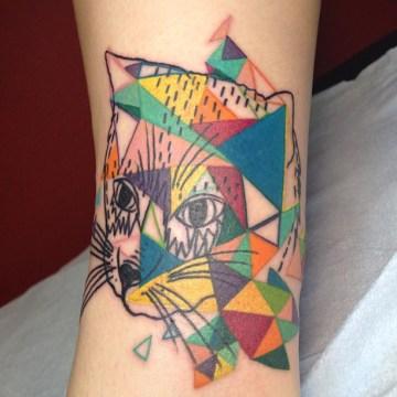 Colourful Triangle Cat