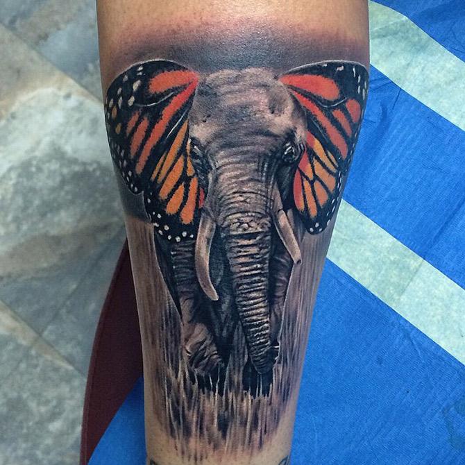 Cute Cartoon Elephant Wallpaper Butterphant Elephant Amp Butterfly Tattoo Best Tattoo