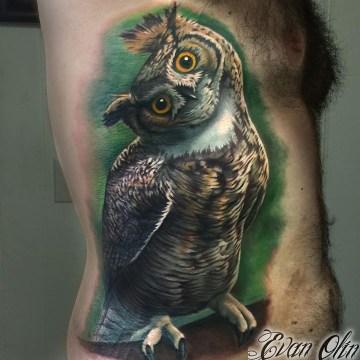 Owl twisting it's head