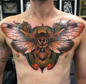 Cicada Chest
